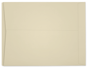 8-3/4 x 11-1/2 Job Ticket Envelopes - 100 lb. Ivory Tag - Envelope Ink
