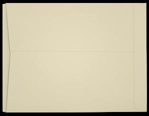 9-1/2 x 12 Job Ticket Envelopes - 100 lb. Ivory Tag - Envelope Ink
